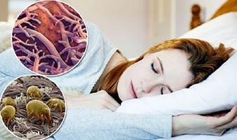 Крепкий сон помогает избавиться от лишнего жира